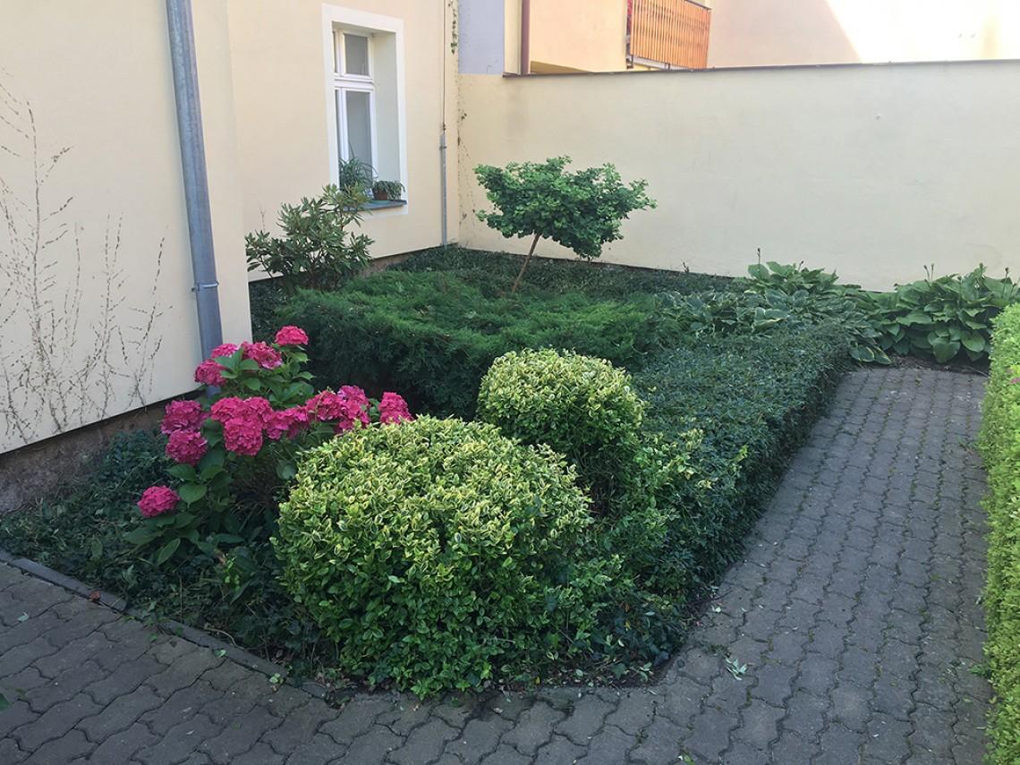 Údržba zahrady Plzeń