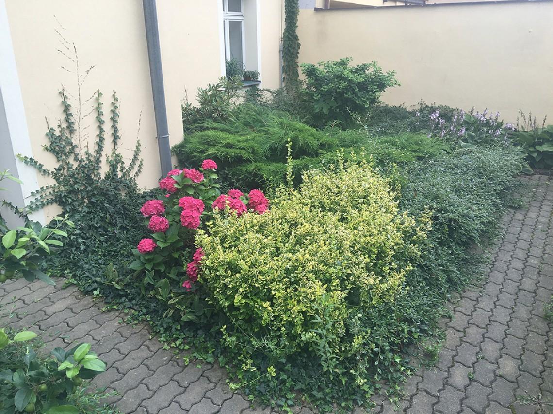 Údržba zahrady Plzeň
